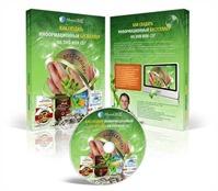 Bestseller_na_DVD